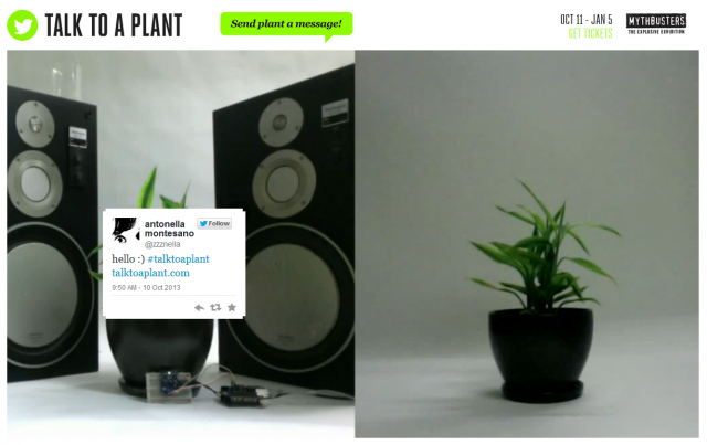 talk to a plant